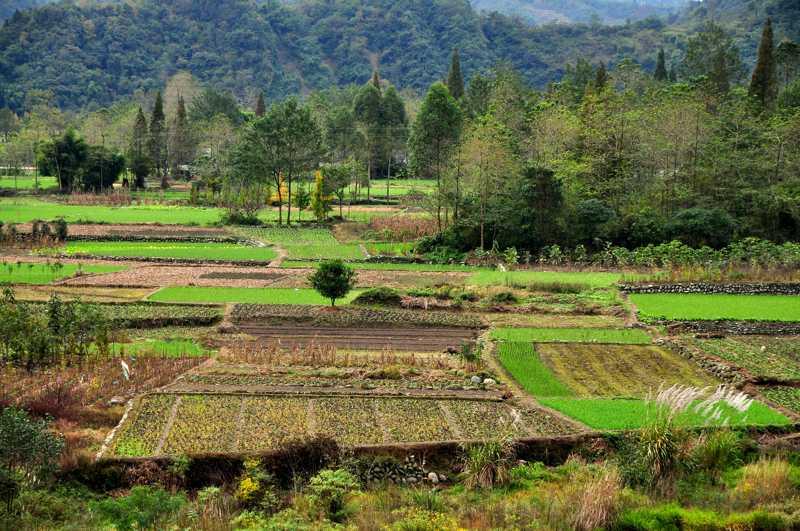 Grundstücksversicherung ür unbebaute Grundstücke